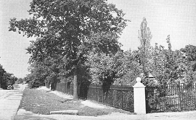 View of cemetery from Kean Avenue